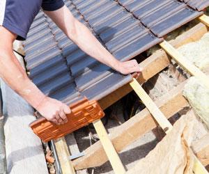Dakdekker Haagsche Dakwerken de specialist in dakwerken